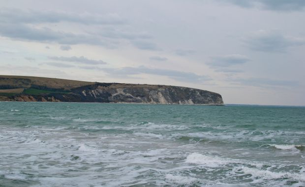 Swanage cliff