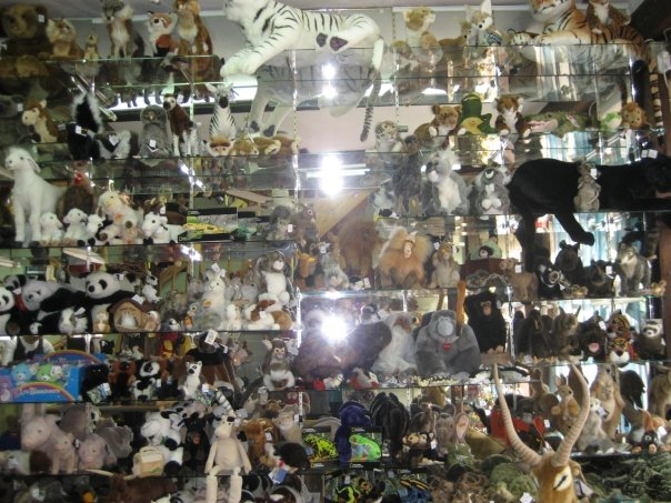 Cuddly animal toy shop shelves