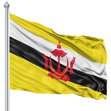 brunei-flag
