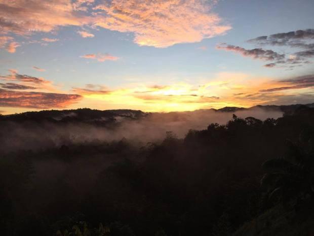 © 2016 Brunei Rainforest Adventure